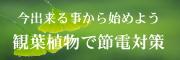 観葉植物で節電対策