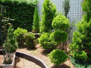 gardening000122