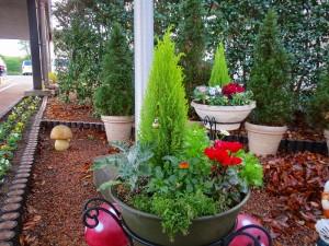 gardening000126