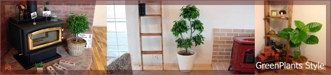 観葉植物のレンタルFAQ