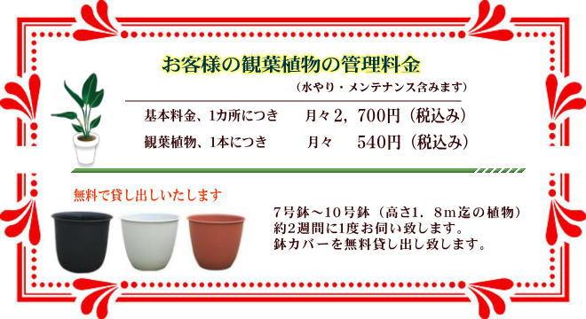 お客様の観葉植物の管理料金