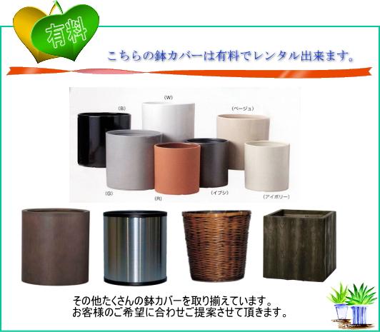 鉢カバー/有料